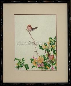 Chim sẻ hồng - AN-008