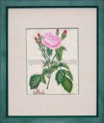 Hoa hồng - FL-044b