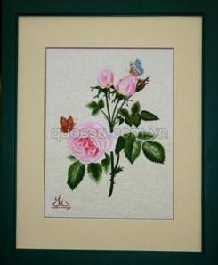 Hoa hồng bướm - FL-042a