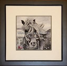 Ngựa trắng đen-AN-065