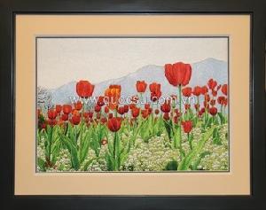 Vườn hoa tulip 2 - FL-167